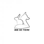 IBB 3D